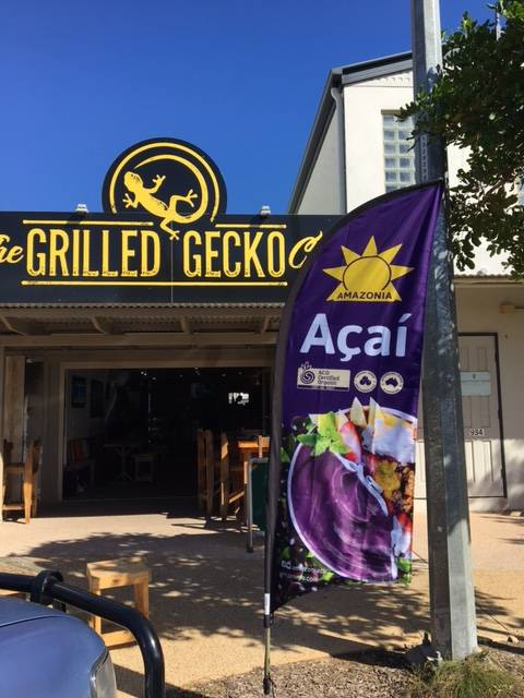 The Grilled Gecko Cafe - Accommodation Port Macquarie
