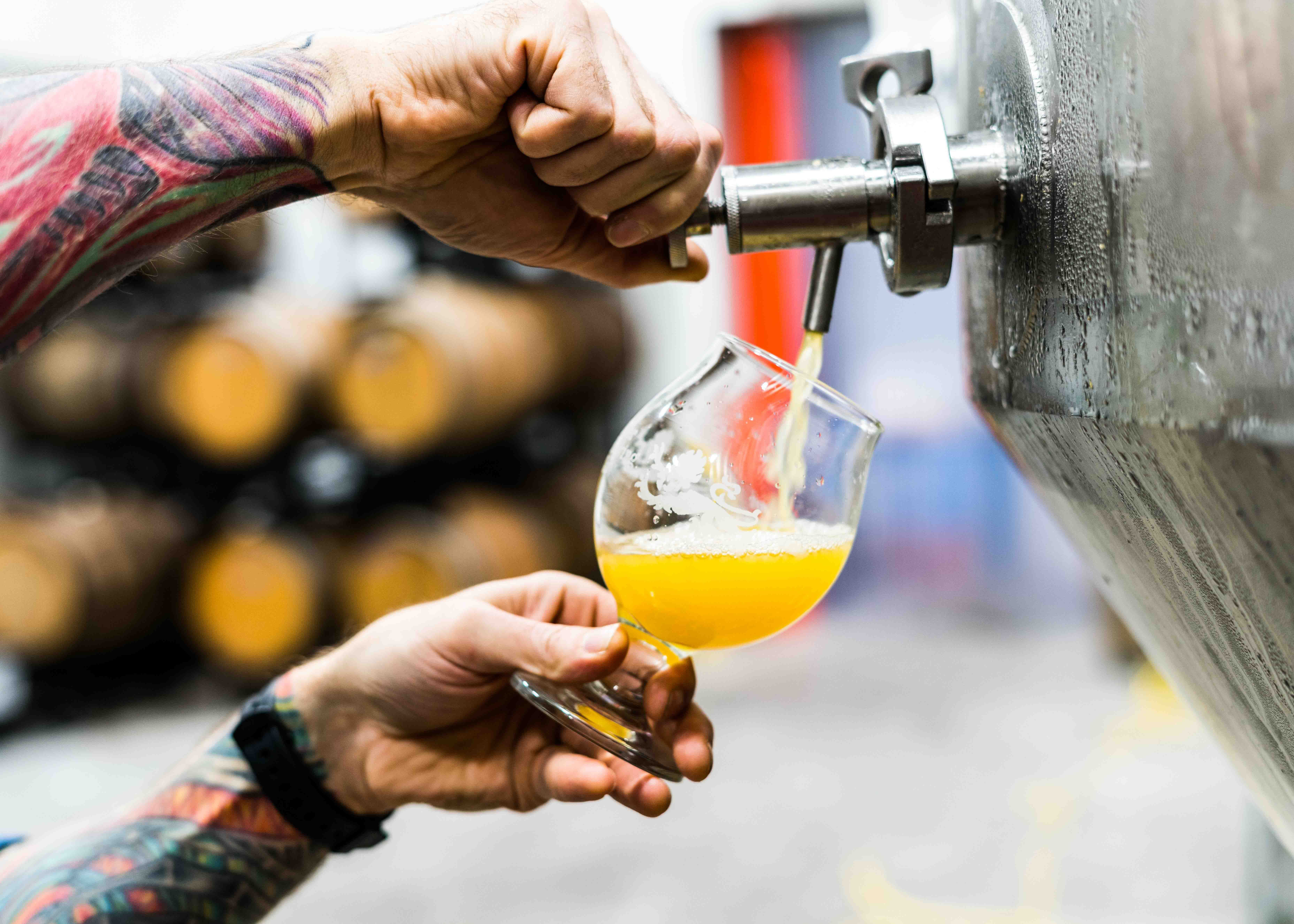 Brewing for Beginners - Accommodation Port Macquarie