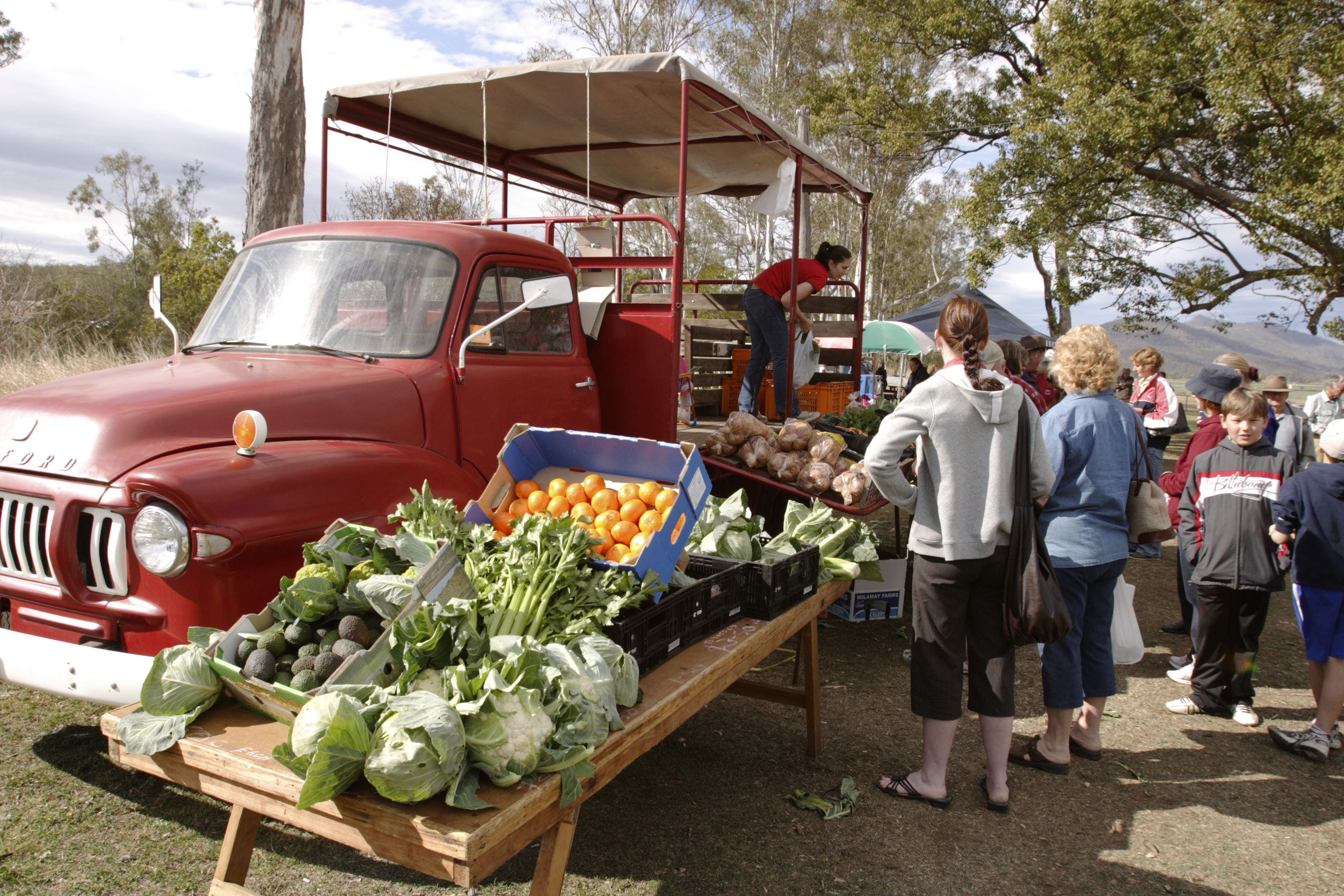 Murphys Creek Markets - Accommodation Port Macquarie