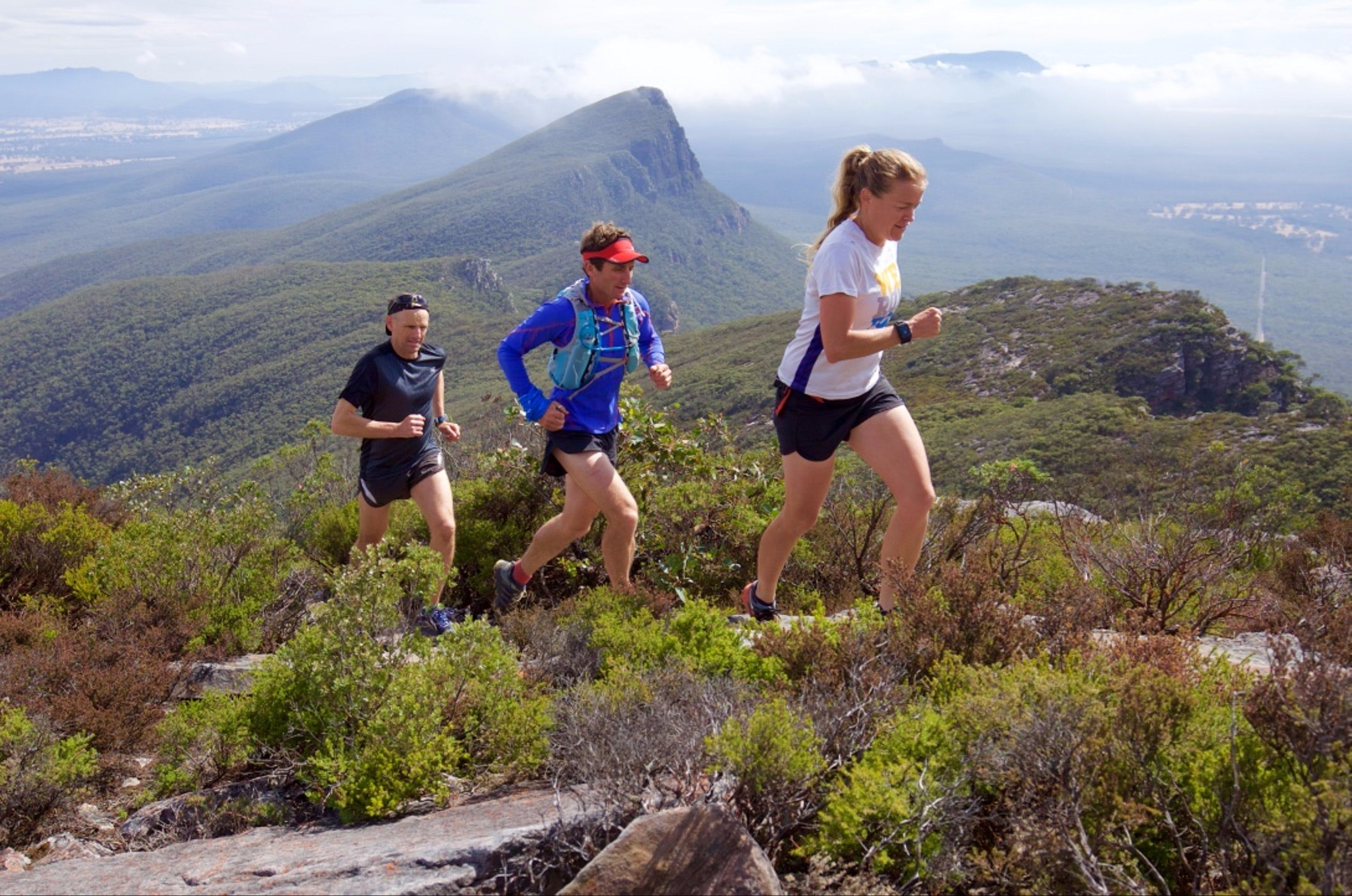 Peaks and Trails Run - Accommodation Port Macquarie