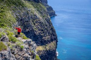 Seven Peaks Walk at Pinetrees Lord Howe Island - Accommodation Port Macquarie