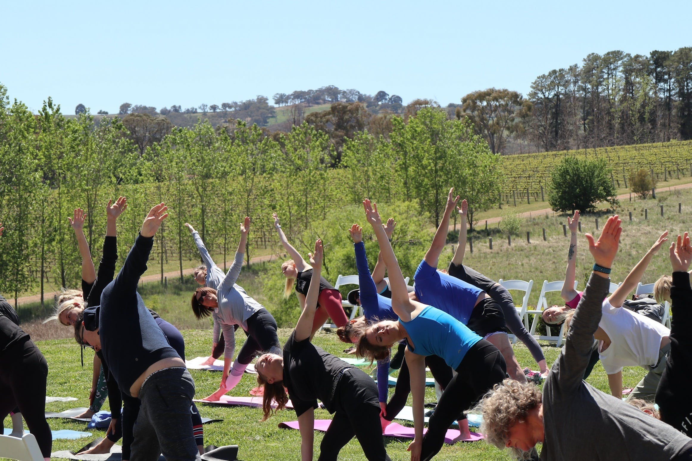 Yoga in the Vines - Accommodation Port Macquarie