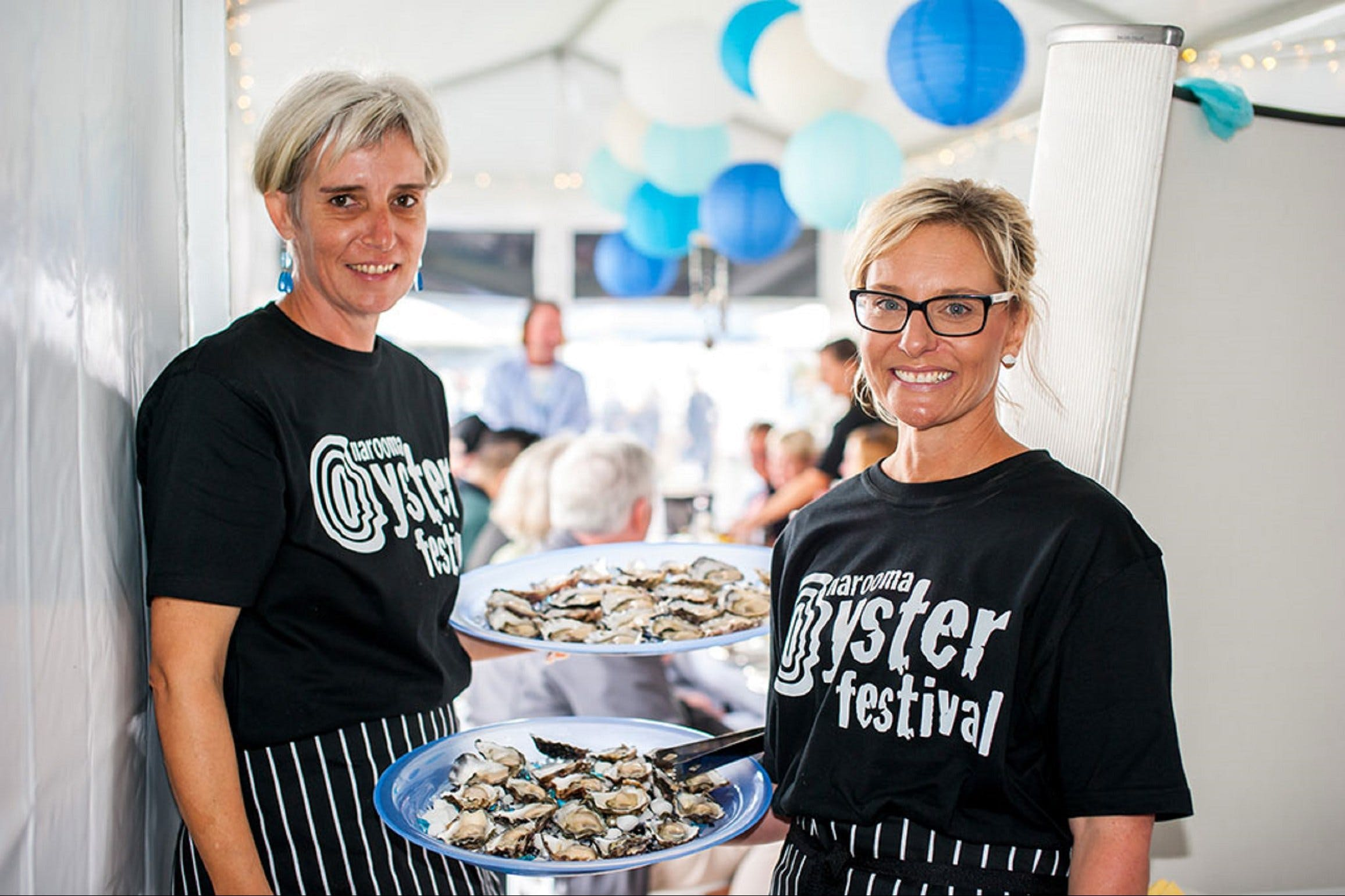 Narooma Oyster Festival - Accommodation Port Macquarie