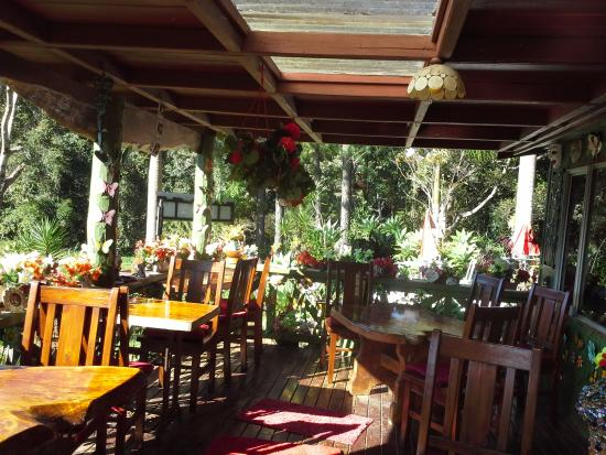 Suzannes's Hideaway Cafe - Accommodation Port Macquarie