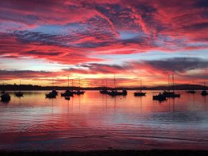 Ambience - Accommodation Port Macquarie